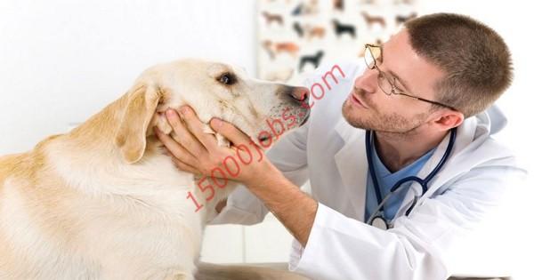 مطلوب أطباء بيطريين للعمل بمؤسسة كبرى في الإمارات