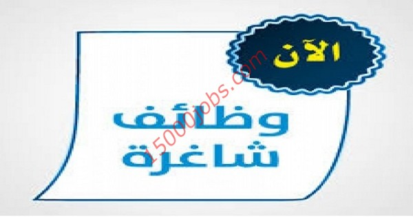وظائف جهة اتحادية بأبو ظبي