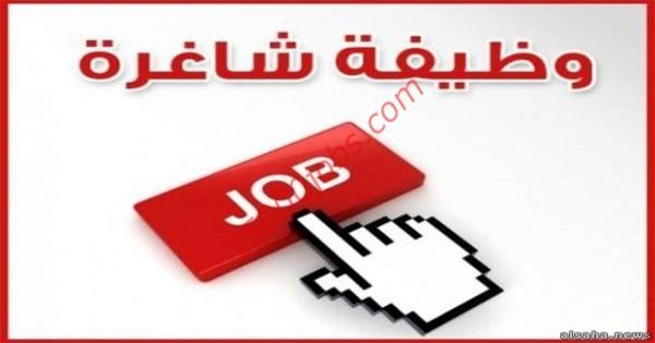 وظائف شاغرة لعدة تخصصات في شركة مرموقة بإمارة دبي