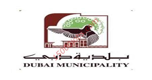 وظائف شاغرة بلدية دبي