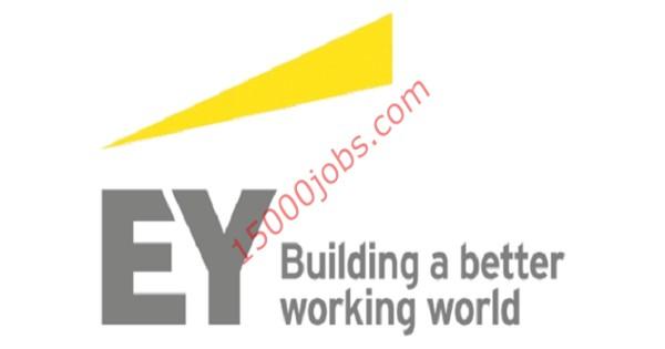 فرص عمل شاغرة في شركة Ey بقطر لمختلف التخصصات