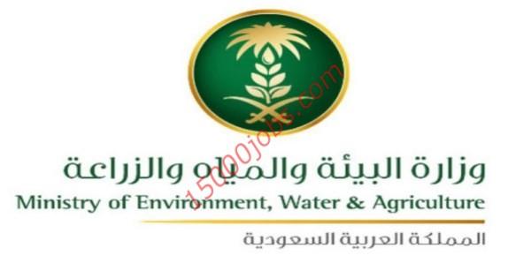 وزارة البيئة والمياه
