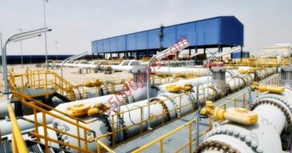 وظائف شركة نفط وغاز رائدة في قطر لمختلف التخصصات