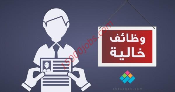 وظائف لمختلف التخصصات بشركة مقاولات قطرية