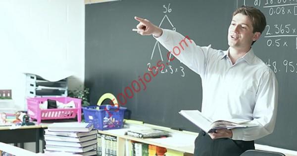 مطلوب معلمون مختلف التخصصات