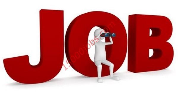 وظائف شركة سلع استهلاكية رائدة في قطر لمختلف التخصصات