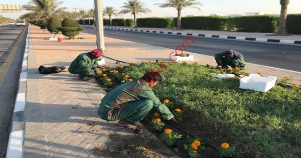 مطلوب أخصائيين حدائق للعمل في شركة لاند سكيب بالبحرين