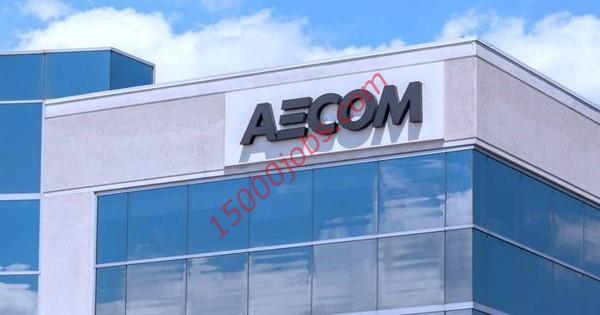 وظائف شركة إيكوم في قطر للعديد من التخصصات