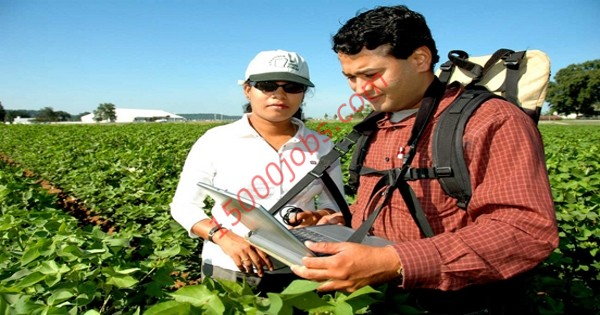 مطلوب مهندسين زراعيين للعمل في شركة كويتية كبرى