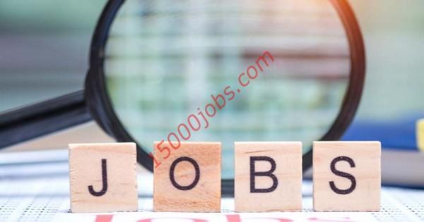 وظائف شركة جولدن فالي في قطر لعدة تخصصات